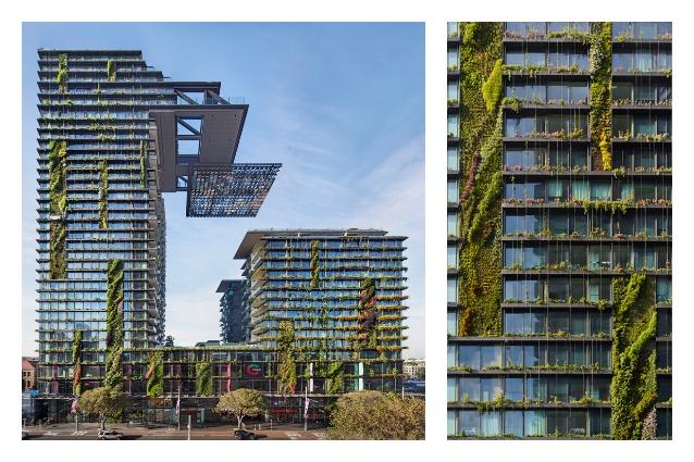 Sydney, ecco il più alto giardino verticale del mondo