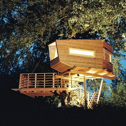Una casa sul tetto della foresta