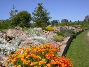 Costruire un giardino roccioso come e dove realizzarlo con - Costruire giardino roccioso ...