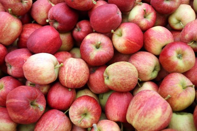 Dimagrire con i rimedi naturali: prova l'aceto di sidro di mele.
