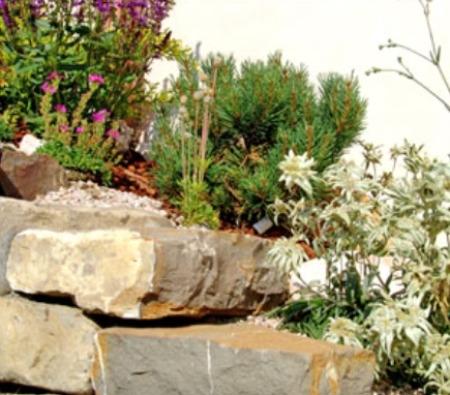 Costruire un giardino roccioso come e dove realizzarlo for Giardino roccioso con piante grasse