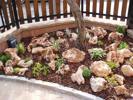 Come Costruire Un Giardino Di Ghiaia : Come fare un bel giardino roccioso: idee per realizzare un giardino