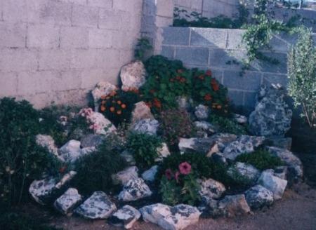 Costruire un giardino roccioso come e dove realizzarlo - Creare un piccolo giardino ...
