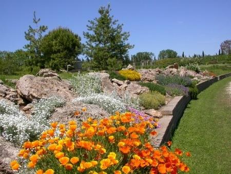 Costruire un giardino roccioso come e dove realizzarlo - Giardino roccioso foto ...