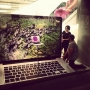 macbook pro retina images fotografie 5