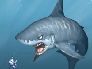 shark1600[1]