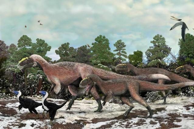 Il Bellissimo Tiranno, scoperto il più grande dinosauro piumato.