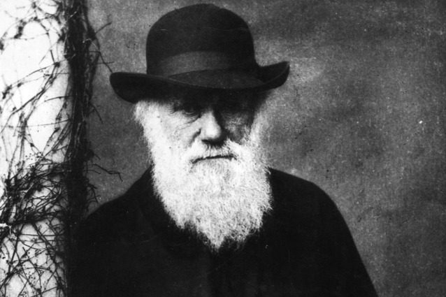 L'importanza di Charles Darwin (anche) nel 2014.
