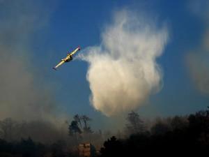 Solo nella giornata di ieri la Forestale ha segnalato 158 incendi boschivi, le fiamme stanno interessando tutta la penisola. In Emilia Romagna i roghi hanno causato anche due vittime, due anziani. Molti roghi anche a Roma.