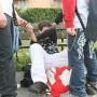 Firenze, bambino di dieci anni legato e picchiato dai bulli