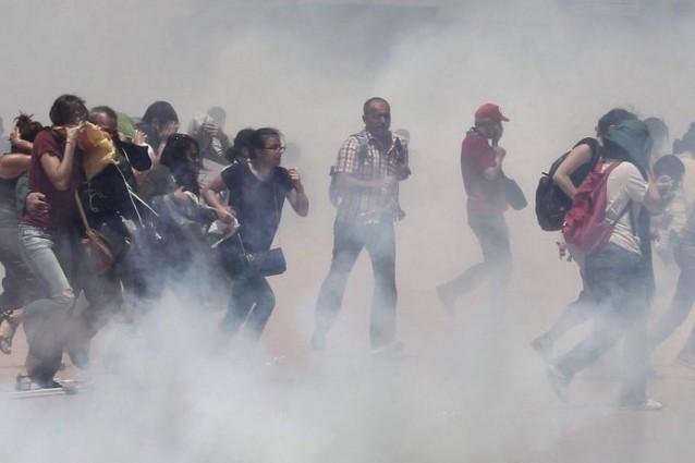 Occupygezi i social media e la rivoluzione turca che - Alberi adatti per viali ...