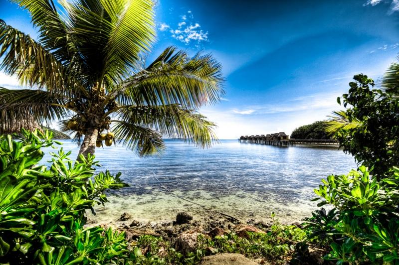 Novembre: Fiji
