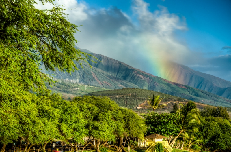 Novembre: Hawaii