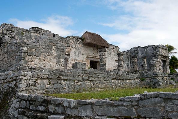 Un adolescente avrebbe trovato una citt maya in messico for Come costruire una palestra nella giungla