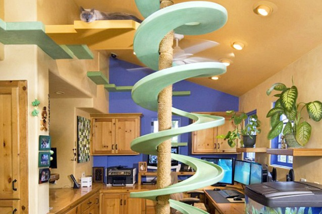 Spende 35000 dollari per trasformare la propria casa in un for Trasformare casa