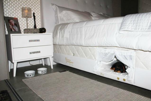 Una cuccia nel letto: ecco l\'invenzione per dormire col proprio cane