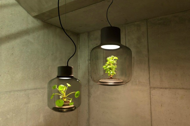 Queste lampade fanno crescere le piante ovunque anche in spazi