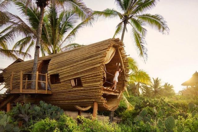 Blue Forest: la casa sull\'albero più lussuosa del mondo