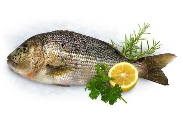 Cucina salutare e originale 5 ricette con il pesce che non conoscevi - Cucina fanpage ricette ...
