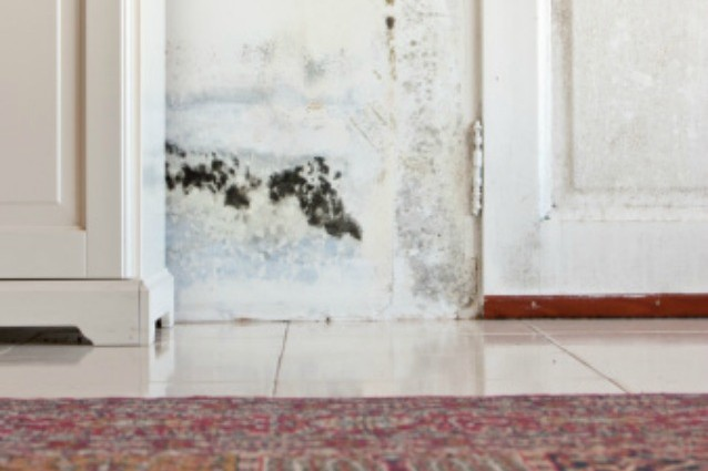 Eliminare umidità dai muri