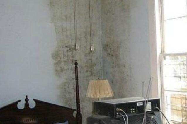 Come togliere le macchie di muffa dai muri for Eliminare la muffa