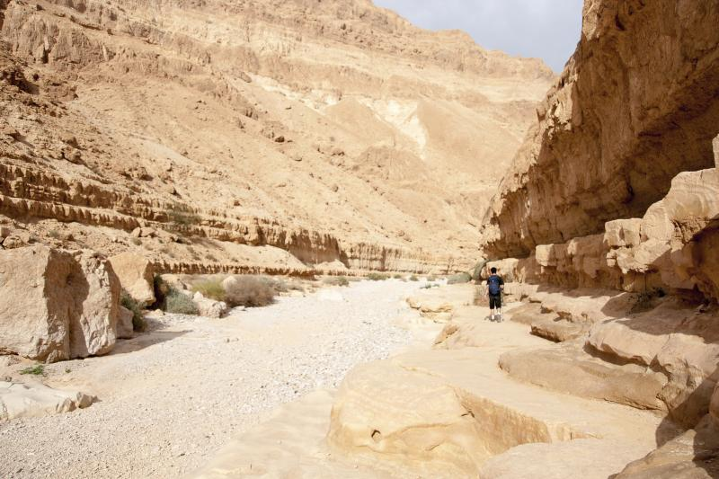 Deserto di Giudea