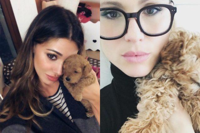 Michelle Hunziker regala cane a Belen Rodriguez