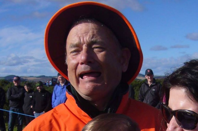 Un nuovo tormentone del web: è Bill Murray o Tom Hanks?