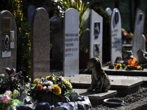 Milano nuovo regolamento cimiteriale le coppie di fatto for Regolamento igiene milano