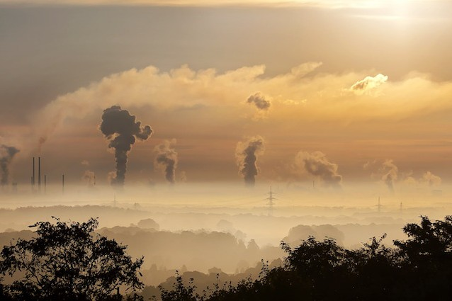 Risultati immagini per Clima e sesta estinzione di massa