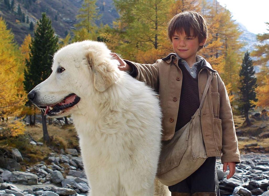 Belle e sébastien il trailer italiano la trama cast