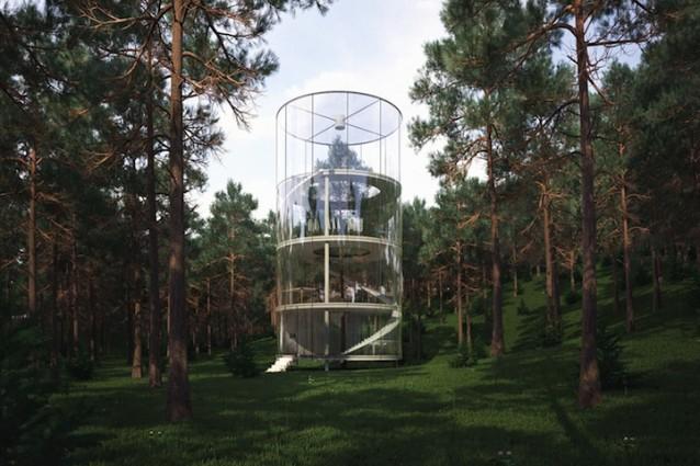 Vivere intorno ad un albero: ecco la casa di vetro che vi immerge nella natura