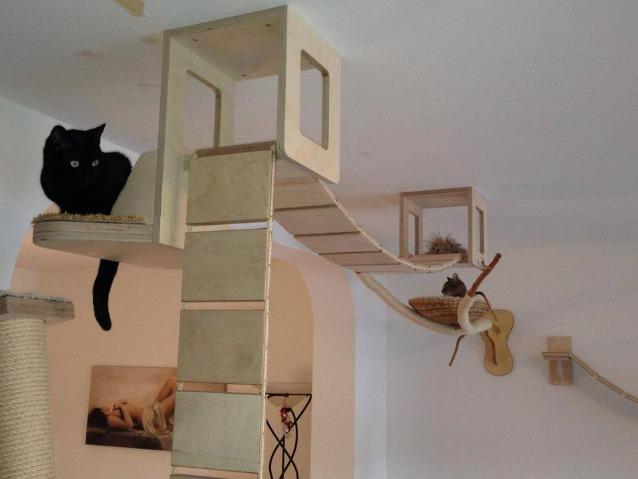 Mobili Per Gatti Ikea : Mobili lettiere per gatti gatti gatto razza come scegliere la