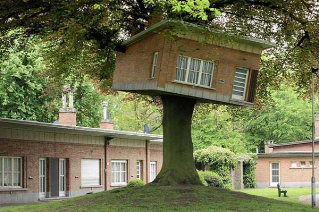 Le case sull 39 albero pi fantasiose al mondo for Case in legno sugli alberi