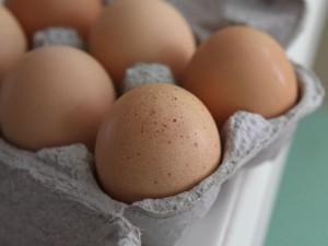 """Uova contaminate, """"in Lombardia nessun caso sospetto"""""""