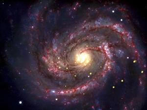 la stella divorata che rivela il buco nero