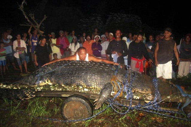 lolong coccodrillo piu grande del mondo morto