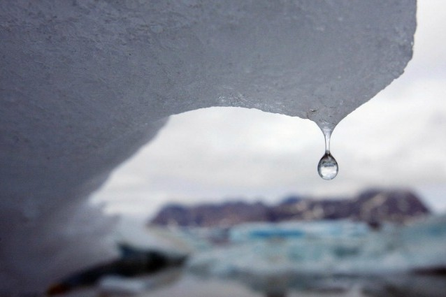Il riscaldamento globale farà estinguere un terzo delle specie animali. E l'uomo?
