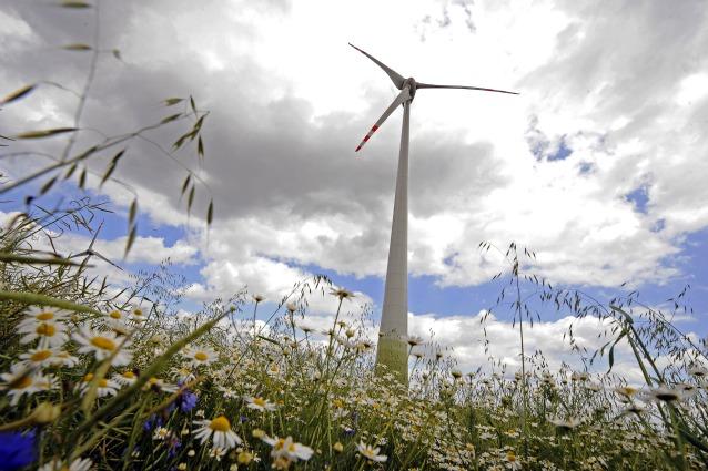 La giornata mondiale del vento e il futuro dell'eolico