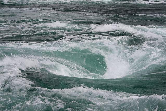 I buchi neri dell 39 oceano atlantico - Foto di animali dell oceano ...