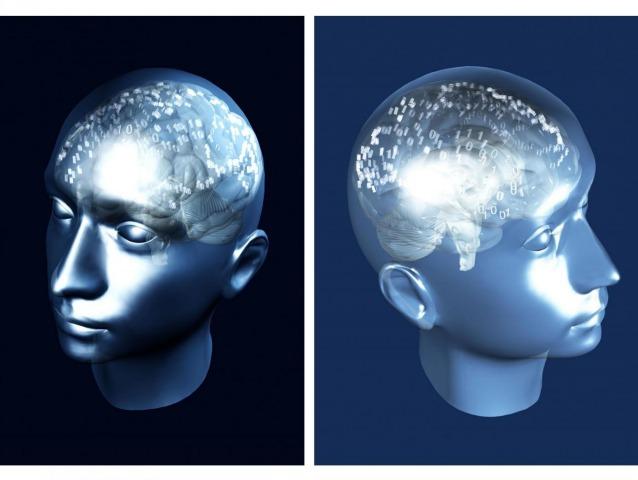 Il cervello prende decisioni anche mentre dorme