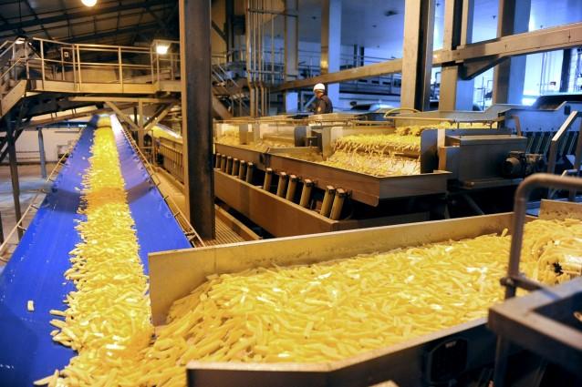 La prima patata modificata per uso alimentare, geneticamente protetta dalla peronospora, è all'esame dell'Unione Europea dopo la richiesta della multinazionale Basf di coltivarla e commercializzarla. E i consumatori cosa ne pensano