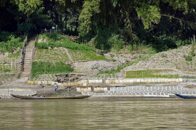 Le popolazioni della regione del bacino Mekong le conoscevano già, ma per la scienza sono un'assoluta scoperta: oltre 200 specie tra piante, rettili, pesci, anfibi, mammiferi ed uccelli, osservati nel 2010 e presentati nell'ultimo rapporto del WWF. Purtroppo su molte di esse già si allunga l'ombra nefasta dell'estinzione.