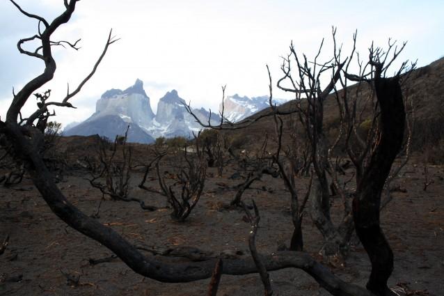 Dopo aver distrutto una parte del Parco Nazionale Torres del Paine, l'incendio che ha fatto bruciare la Patagonia per cinque giorni è stato stabilizzato, le autorità ritengono che nelle prossime ore saranno domati gli ultimi focolai, ma i danni sul territorio potranno essere sanati solo nel giro di cinquant'anni.