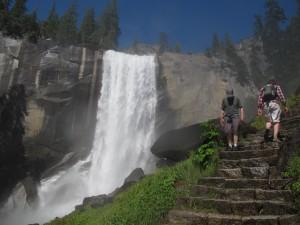 Allarme virus da roditori nello Yosemite Park: due vittime e 10mila a rischio.