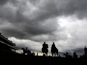 Australia: 10mila cavalli selvaggi saranno abbattuti per tutelare il territorio