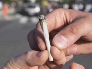 In Italia diminuisce il consumo di droga, ma è allarme cannabis tra i giovani