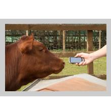 google_animals