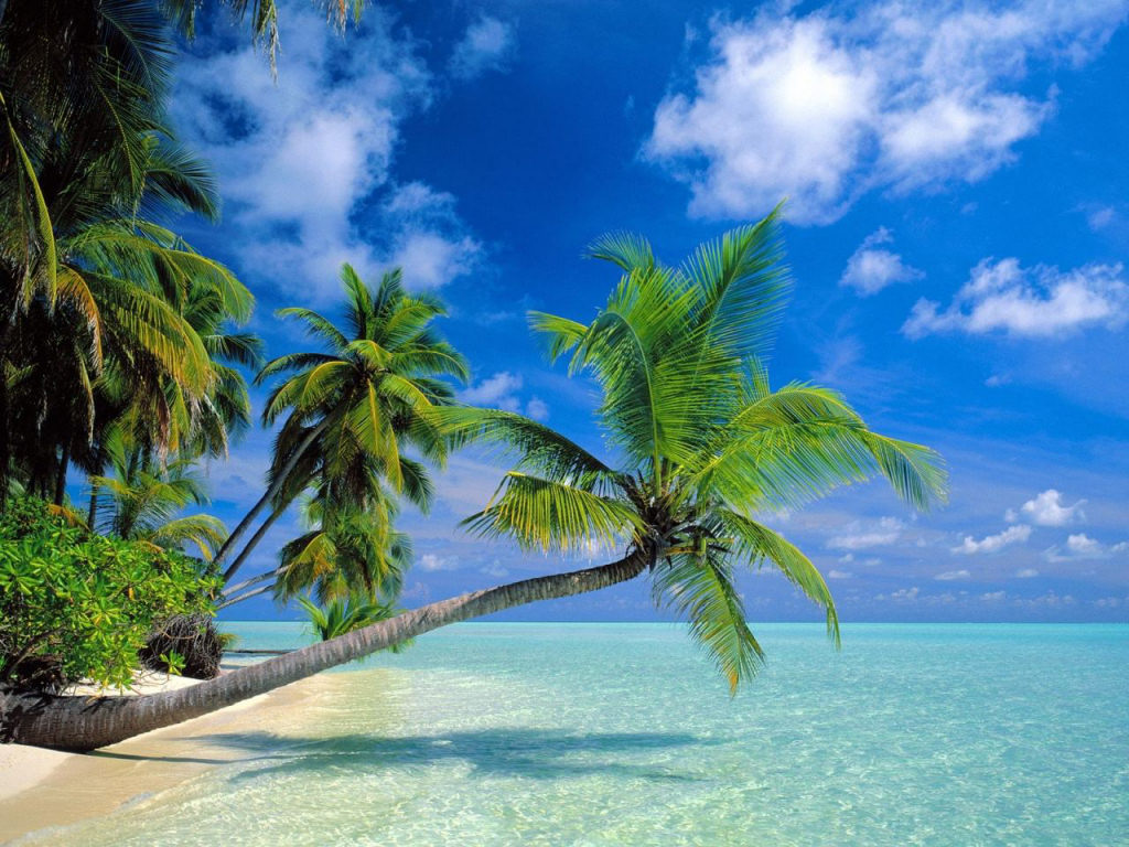 05 maldive destinazione paradiso 5
