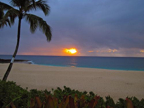 Le Isole Hawaii  Lontano Dal Mondo Le Terre Emerse Pi U00f9